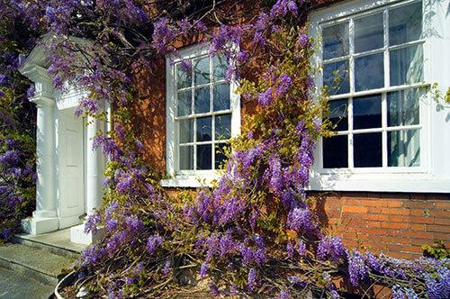 heritage-sash-window-painting-and-decoration